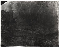 untitled [antietam # 18] by sally mann